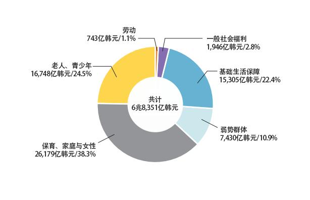 2017 年各福利领域预算(按组织分类)